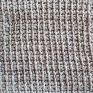 Extended Tunisian simple stitch